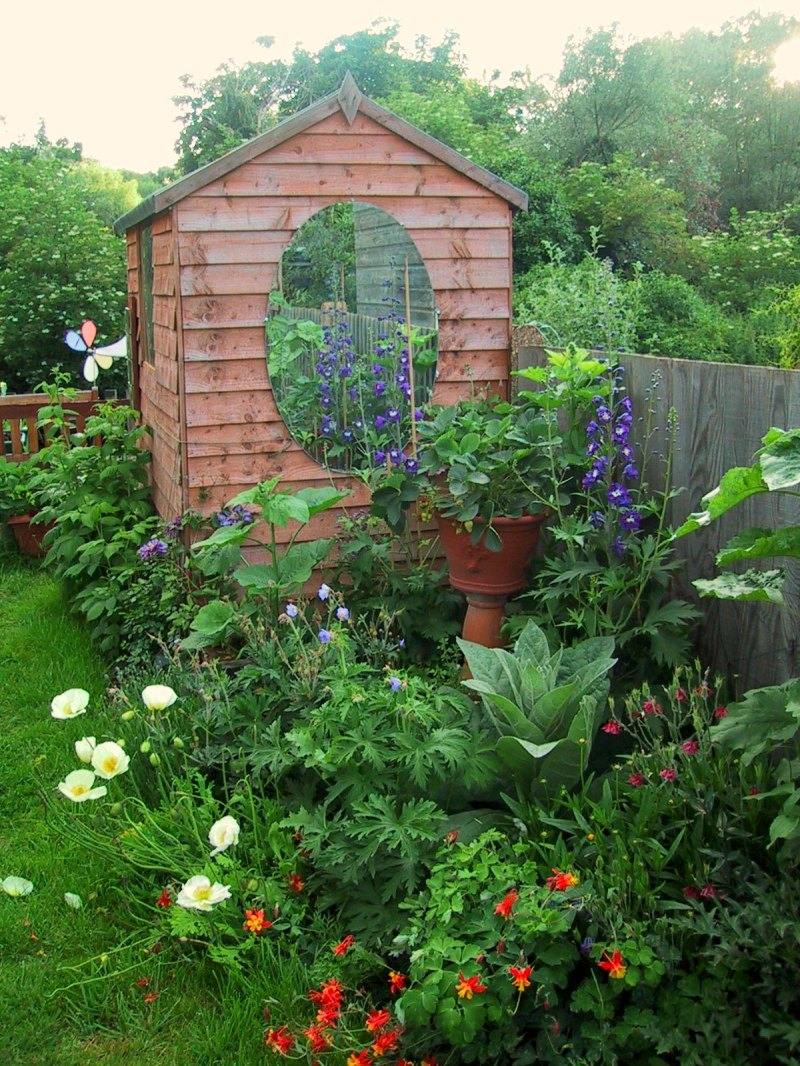creating a garden pt 4 sheds and rhubarb u2013 homegrown kate
